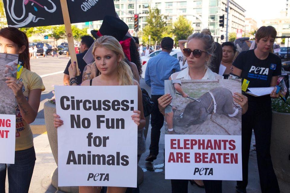 Actresses Renee Olstead & Megan Park protesting Ringling