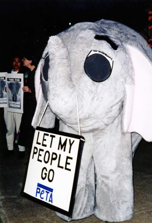 Elephant mascot costume protests circus use of elephants
