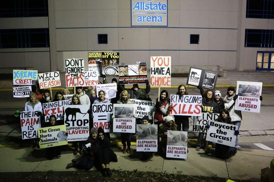 Protesting RBBB Circus Allstate Arena