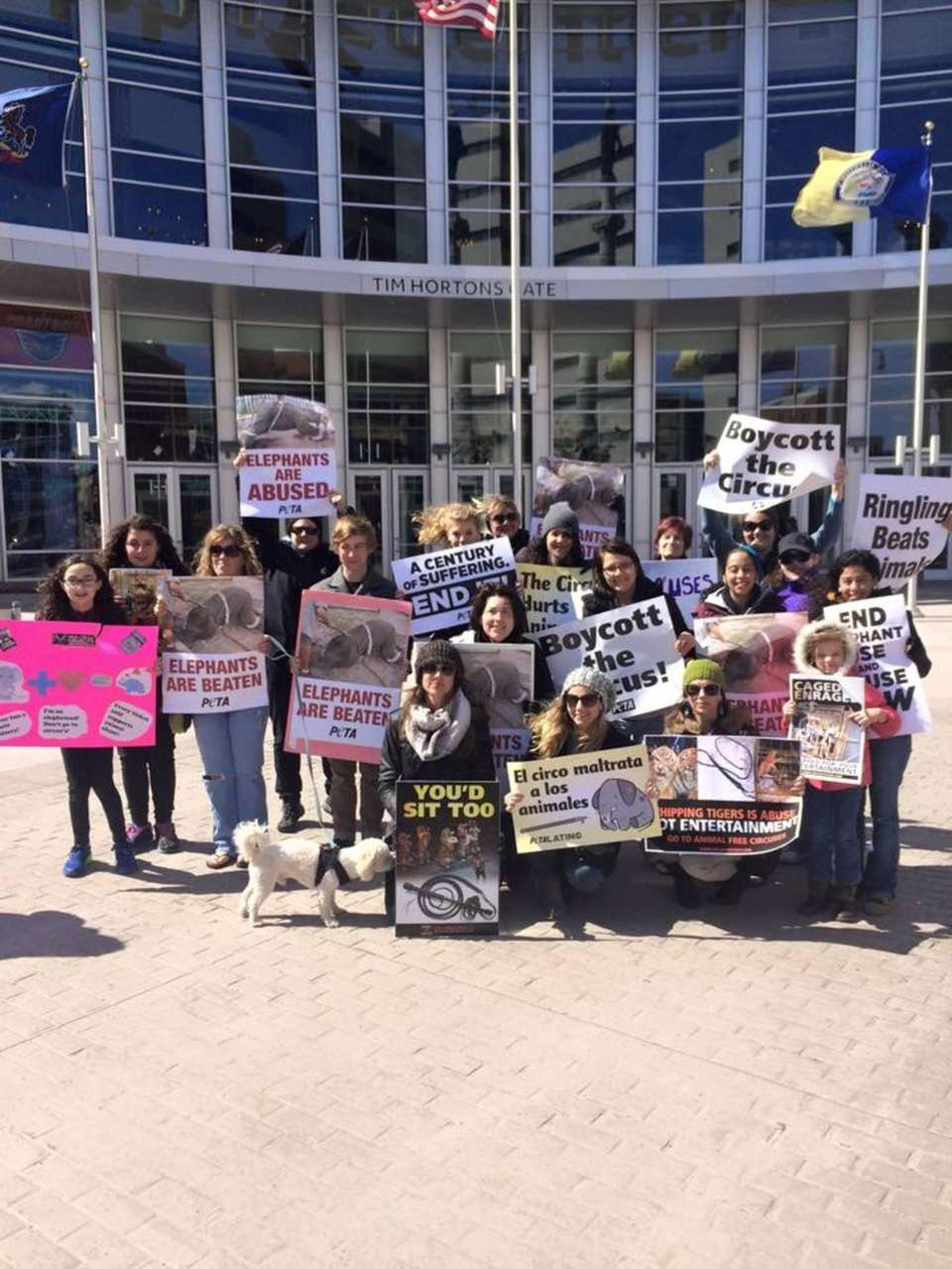Local activists protesting Ringling's animal abuse.