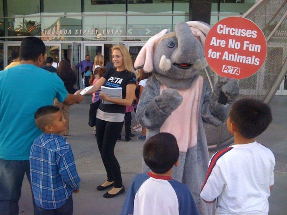 Hayden Hamilton of PETA distributes free anti-circus coloring