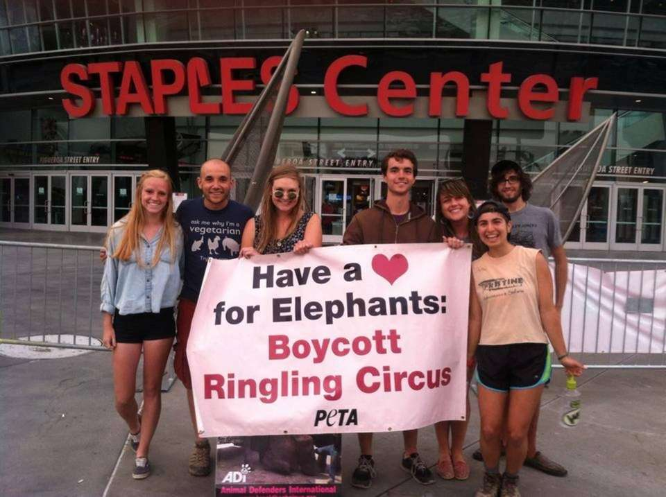 Activists protesting Ringling Bros. cruelty in Los Angeles