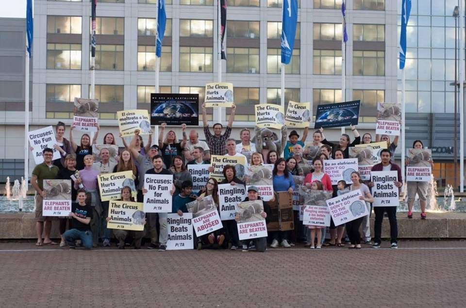 Dozens of compassionate citizens protesting the cruel Ringling
