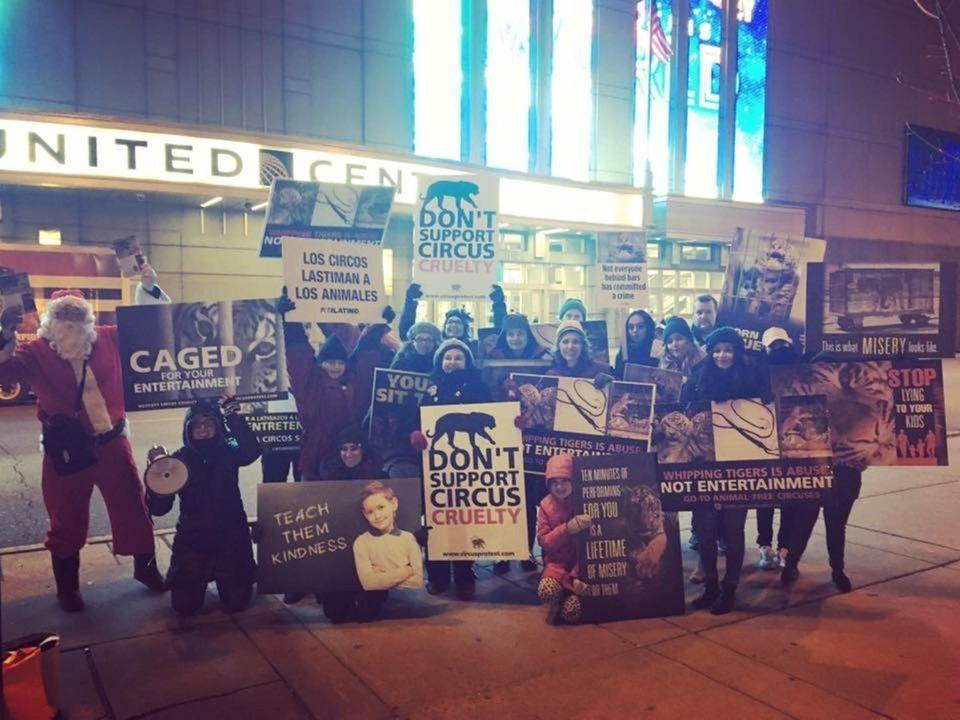 Protesting RBBB Circus at United Center in November
