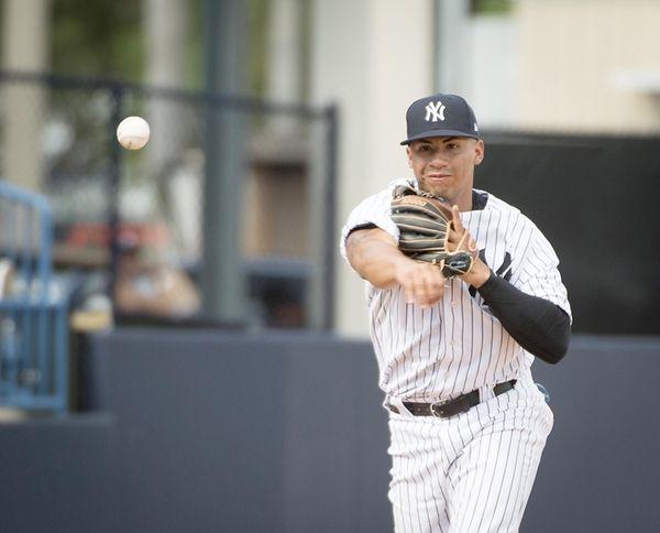 New York Yankees' SS Gleyber Torres fielding a