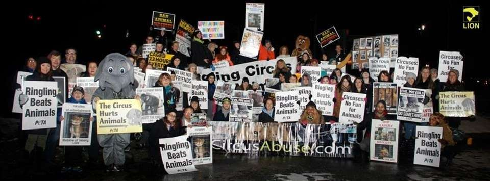 Long Island Orchestrating for Nature (LION) protests Ringling