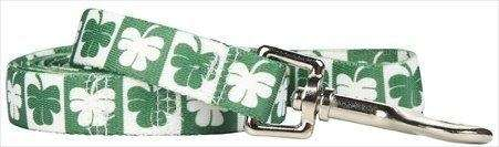 Walk around town with this festive shamrock leash,