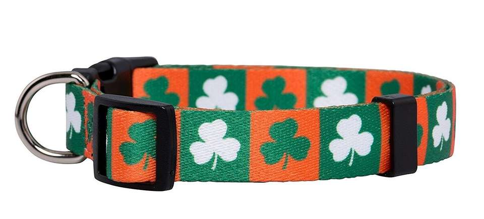 Give your pup some luck this holiday with