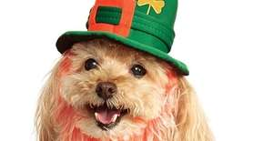 Celebrate St. Patrick's Day with these holiday accessories