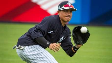 New York Yankees infielder Ronald Torreyes takes part in fielding
