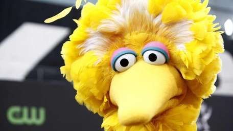 Big Bird plays a big role in the