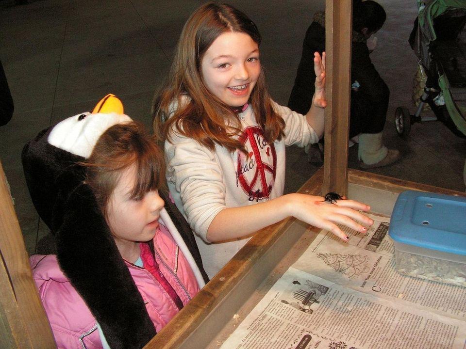 The Long Island Aquarium & Exhibition Center (431