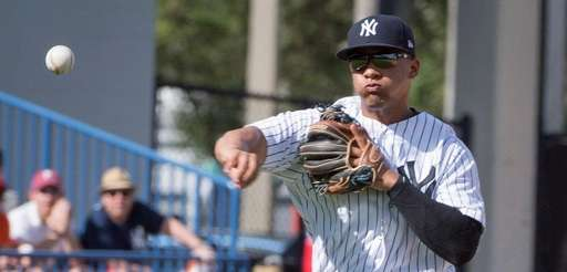 New York Yankees shortstop prospect Gleyber Torres is