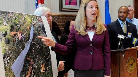 Suffolk County Legislator Kara Hahn (D-Setauket), speaks about