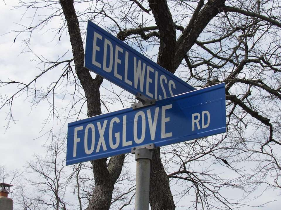These roads may both be named after flowers,