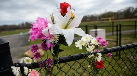 Flowers shown placed on a fence surrounding the