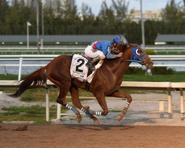 Gunnevera, with jockey Javier Castellano, races in the