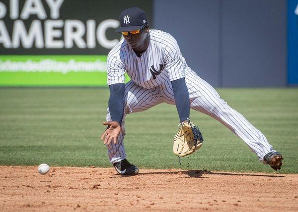 New York Yankees shortstopDidi Gregorius fields a ball