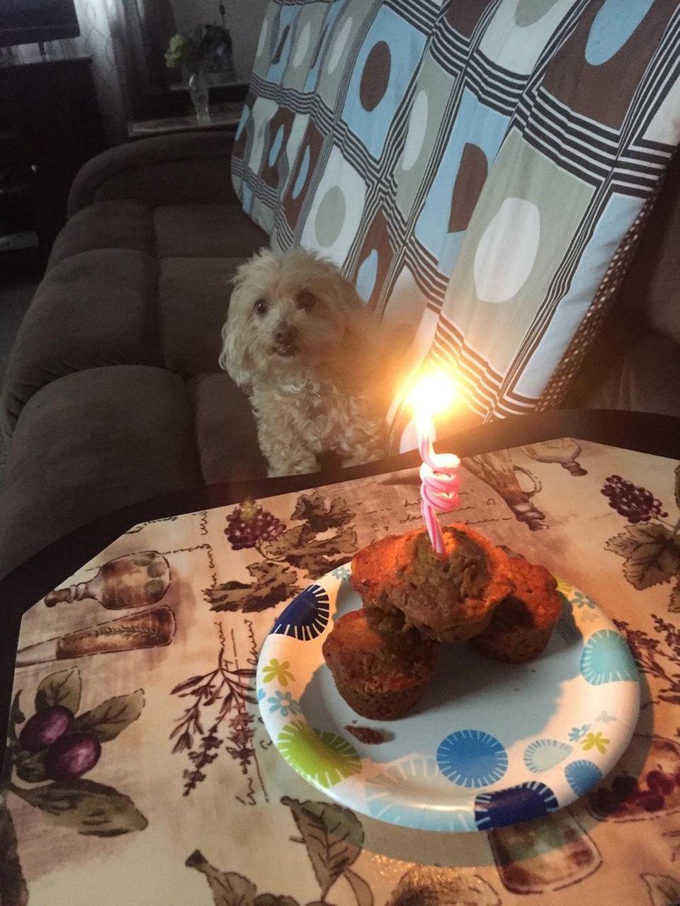 Brandy Lynn's 10th Birthday! Celebrating with delicious