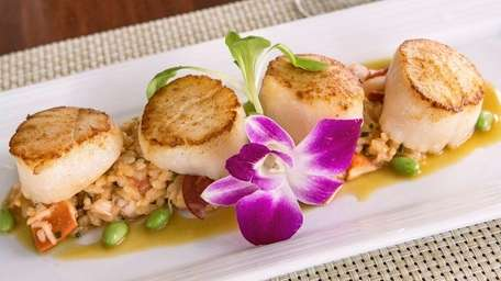 Pan seared local diver scallops with Montauk lobster,
