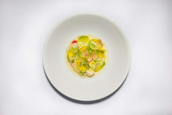 Fluke ceviche with cucumber and radish is on