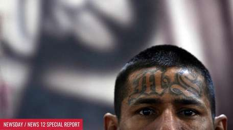 A member MS-13 is picturedin the Criminal Center