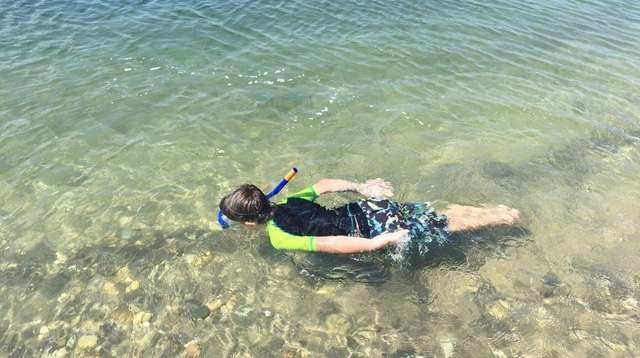 Logan Canonico, 5, snorkels in Wading River Creek.