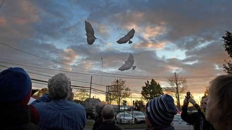 People release balloons shaped like doves.
