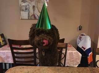 Tavares on his first birthday