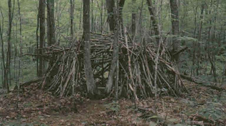 Kidsday reporter Bryan Luper's fort in the woods