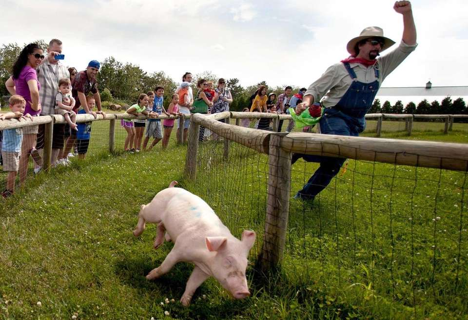 Enjoy Father's Day weekend at Harbes Family Farm