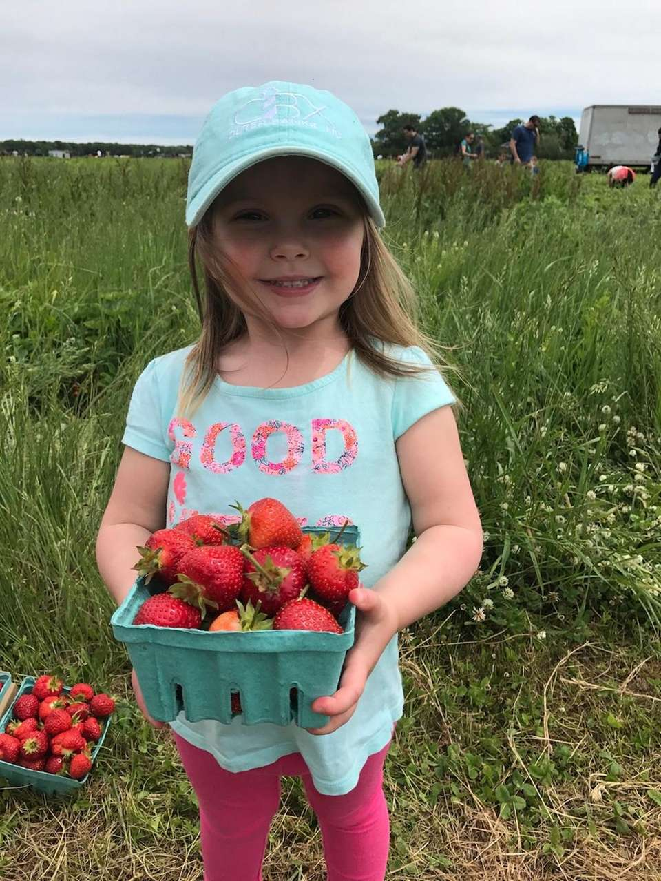Ainsley Lane picking strawberries!