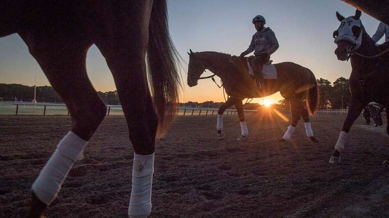 Exercise riders give horses a workout on June