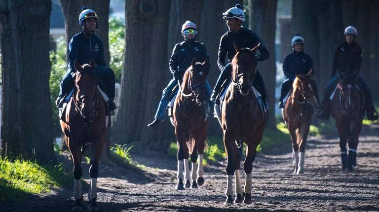 A look at workout week before the Belmont