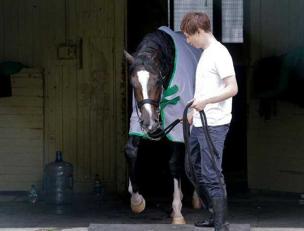 Assistant trainer Masaaki Minamida leads Epicharis from his