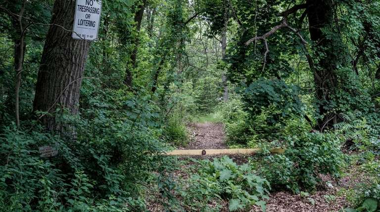 The wooded area along Rt. 106 in Oyster