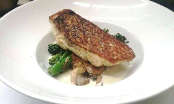 Pan-roasted striped bass with broccolini and artichoke-truffle veloute