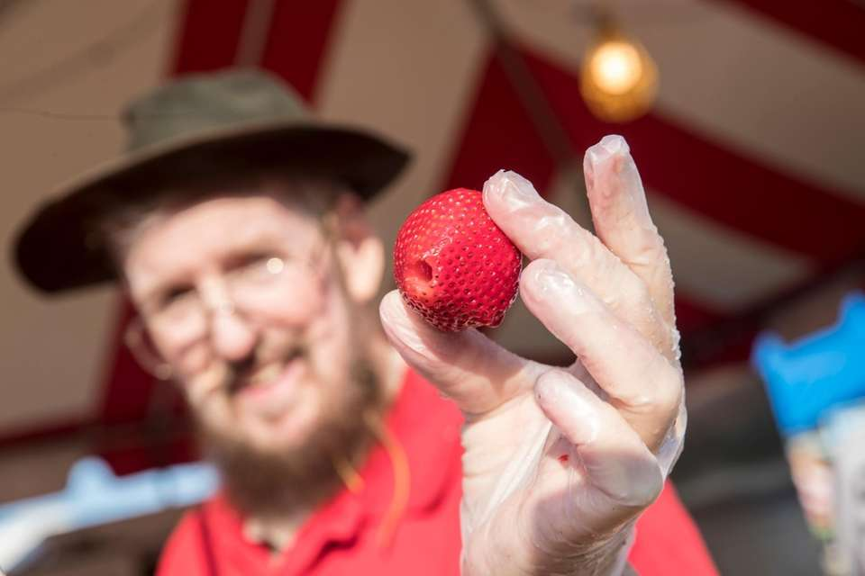Lions Club member Al Richards holds a strawberry