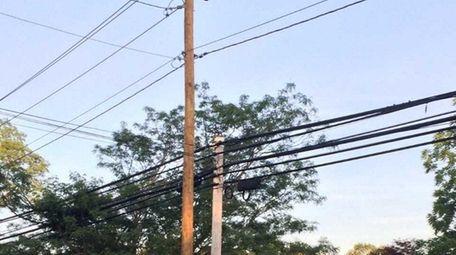A new utility pole next to a shorter