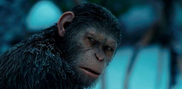 Andy Serkis plays a simian warrior in