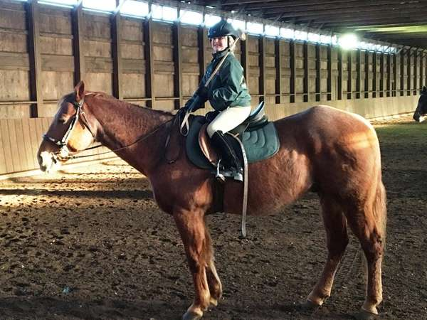 Kidsday reporter Amy Carson rides at Country Farms