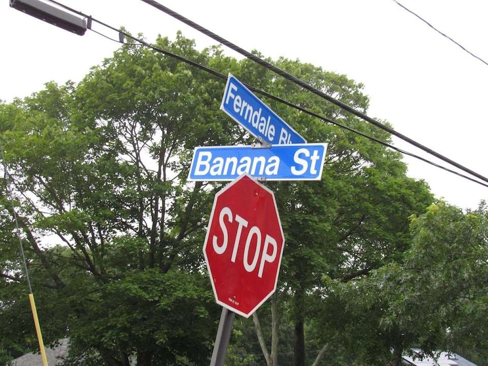 In Central Islip, there's a whole bunch of