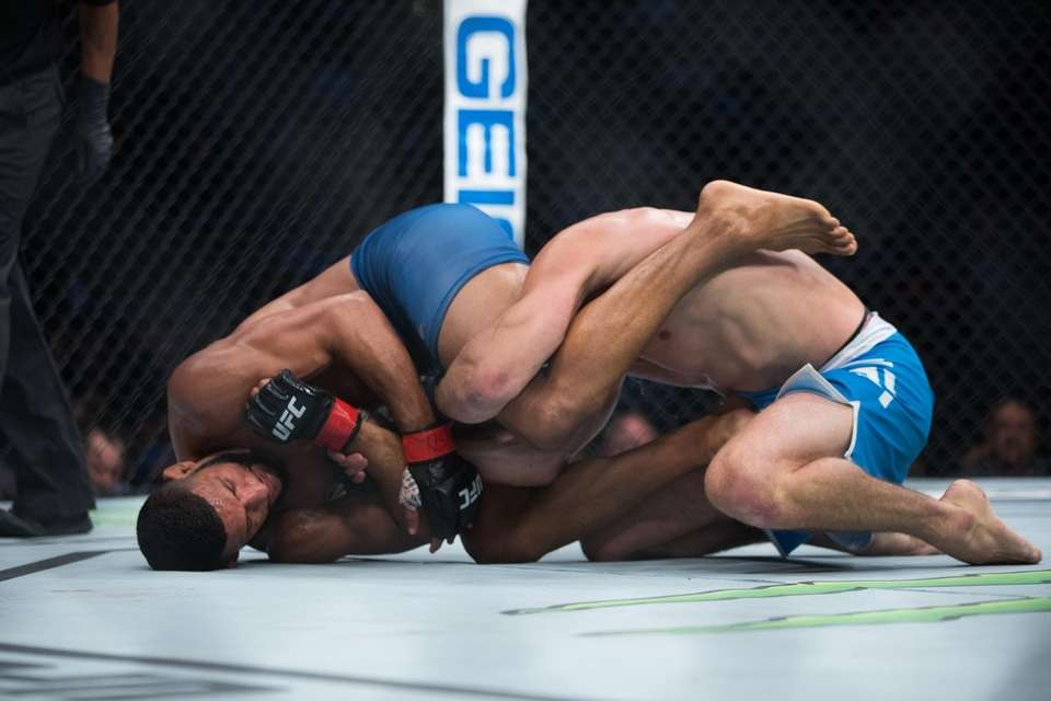 Welterweights from The Ultimate Fighter, Dhiego Lima and