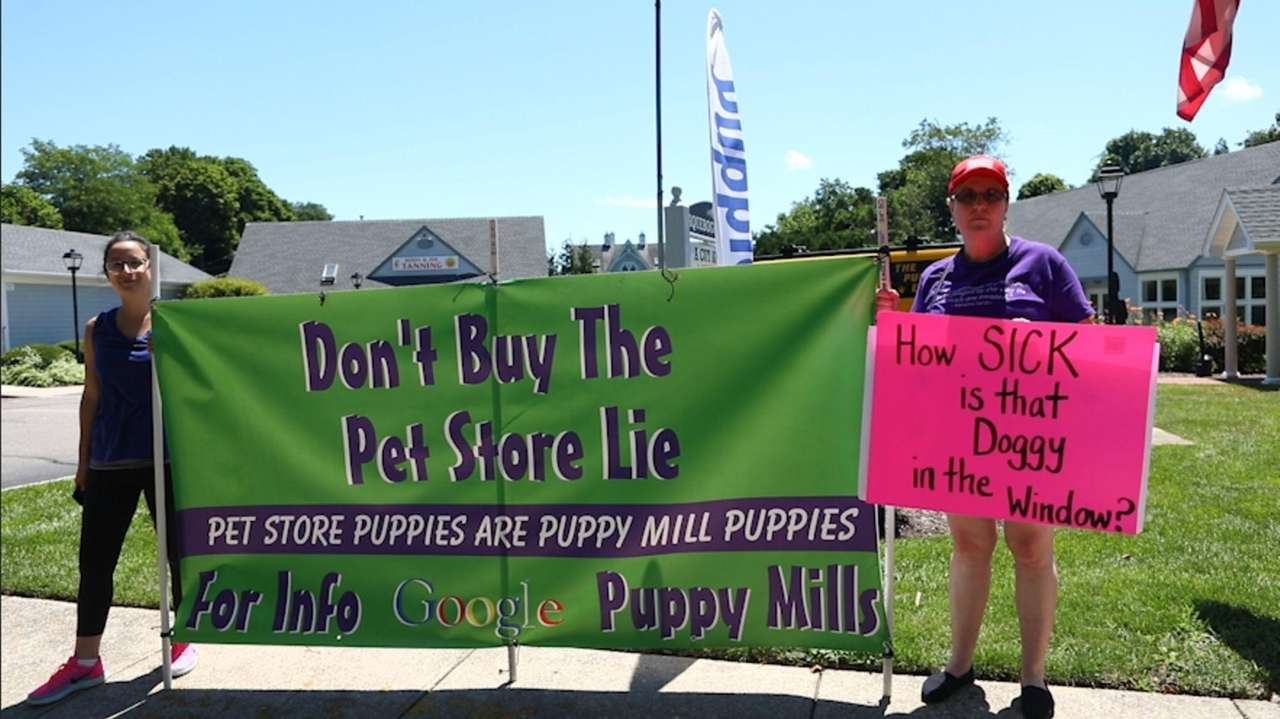 Aprotest was held by Puppy Mill Free Long