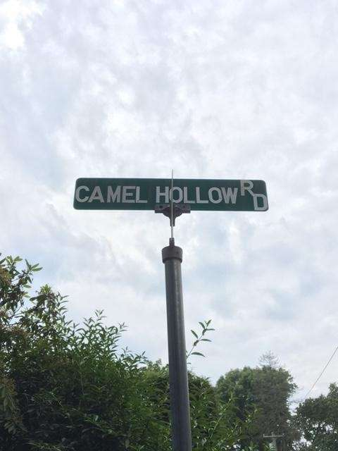 Camel Hollow Road is right off of West