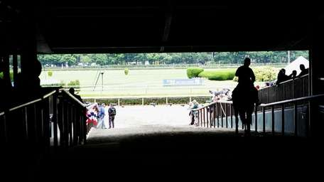 A horse is led to the track at