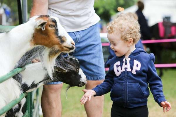 Two-year-old Aria Leibrock of Medford enjoys the petting