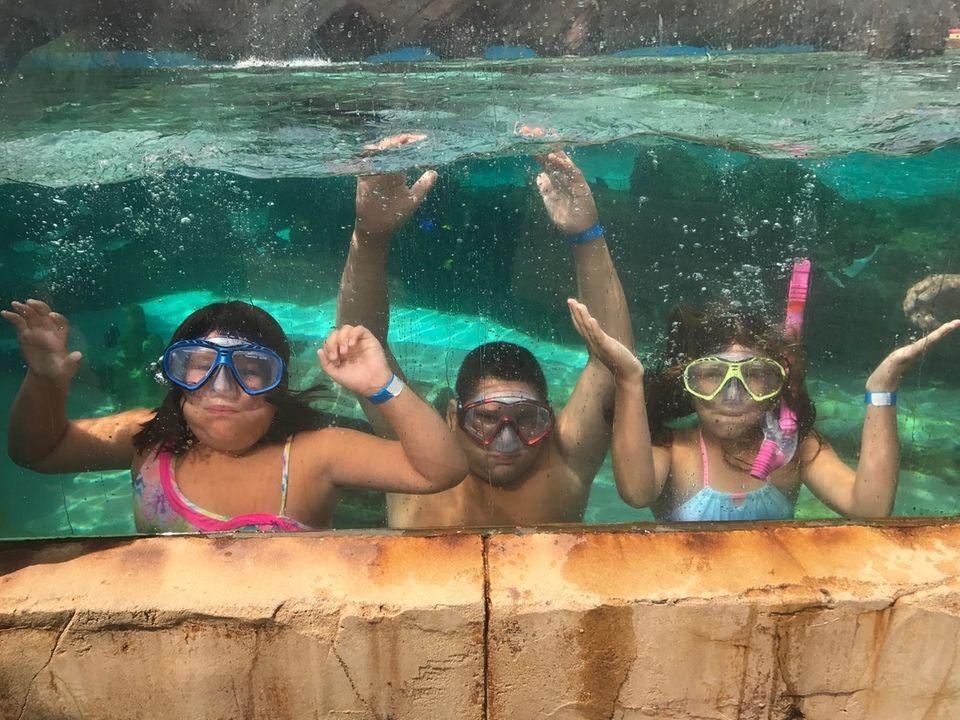 My 3 kiddies at the LI aquarium doing