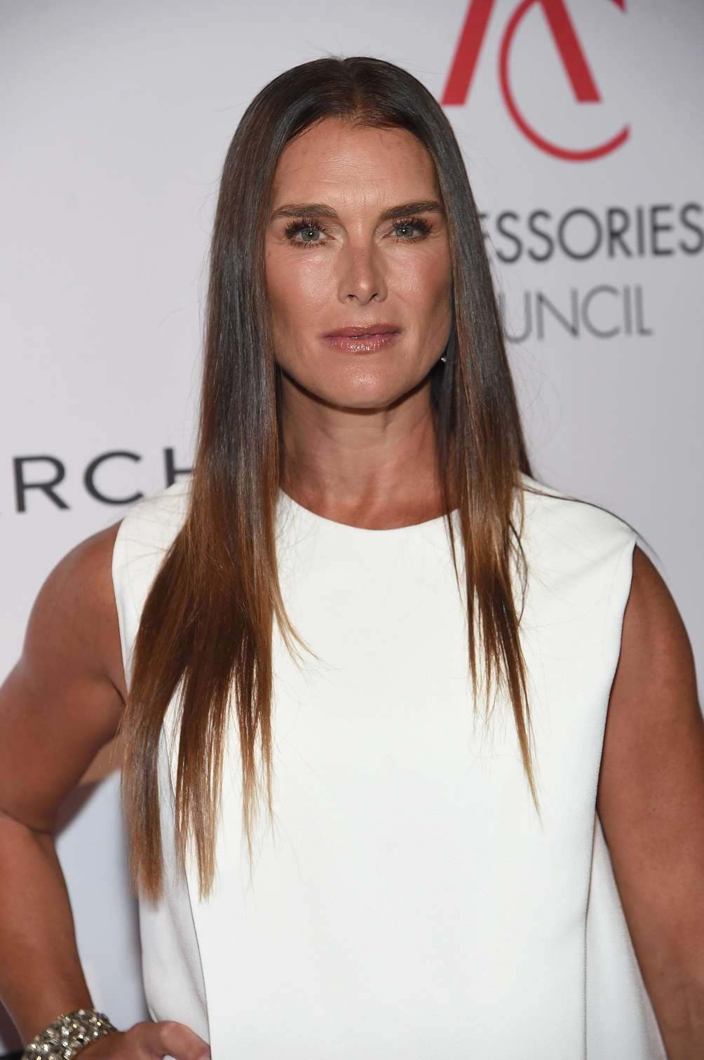 Brooke Shields at the Accessories Council's 21st Annual