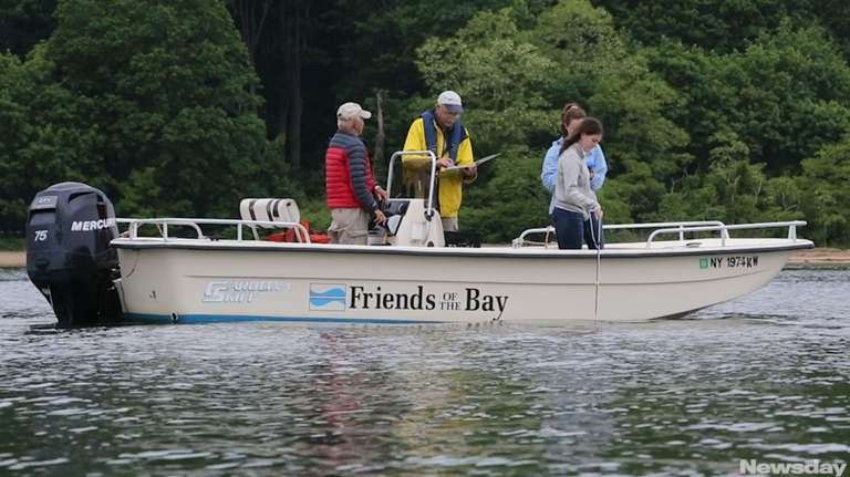 Friends of the Bay, one of the groups